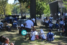 Festival Crotona park_6